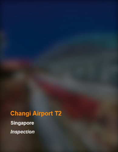 Changi Airport T2_SG_Inspection_bb